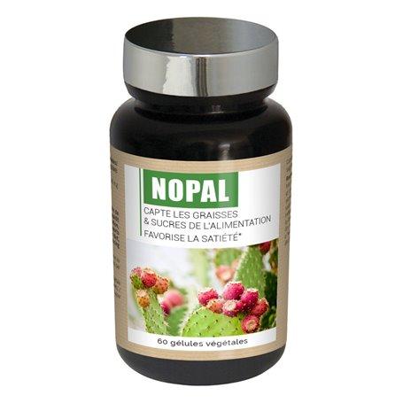 Nopal Capteur Naturel de Sucres et de Graisses Ineldea - 1